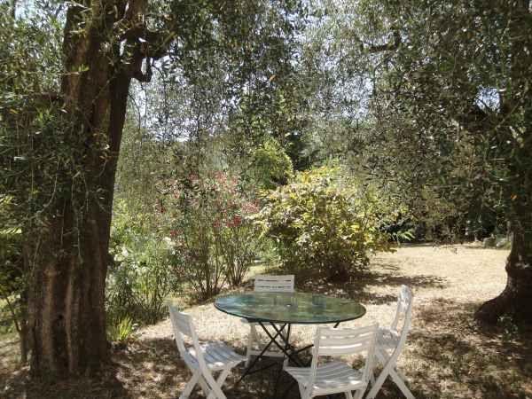 Giardino Affitto Villa  81732 Cannes