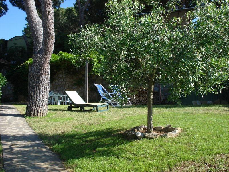 Affitto Appartamento 74192 Capoliveri