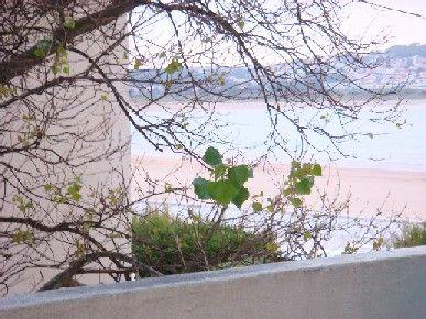 Vista dal terrazzo Affitto Appartamento 17185 São Martinho do Porto