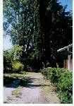 Vista esterna della casa vacanze Affitto Casa 18048 Gujan Mestras