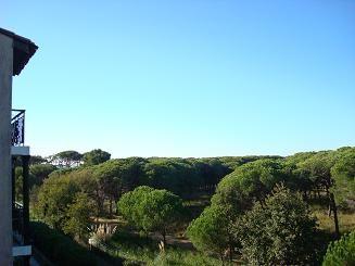 Vista dal terrazzo Affitto Appartamento 36335 La Londe les Maures