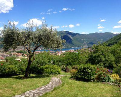 Vista dalla casa vacanze Affitto Villa  38515 Iseo