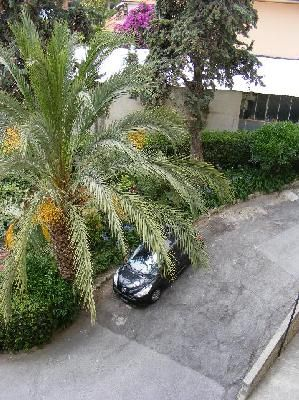 Cortile Affitto Appartamento 39338 Sanremo