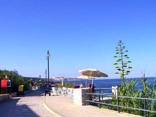 Vista nelle vicinanze Affitto Villa  44776 Gallipoli