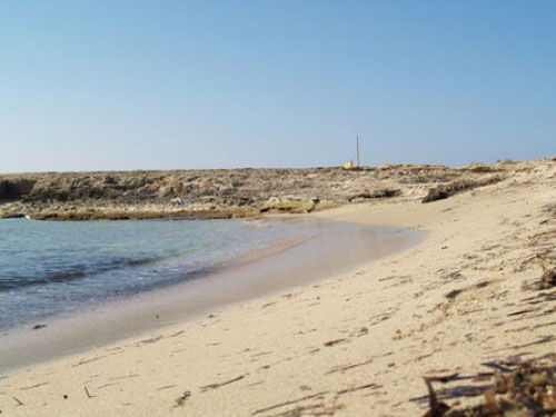 Spiaggia Affitto Appartamento 52704 Gallipoli