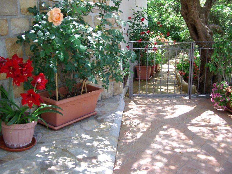 Giardino Affitto Villa  54358 Capo d'Orlando
