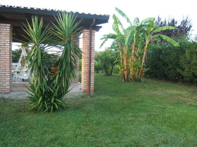 Giardino Affitto Appartamento 56650 Tropea