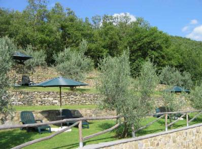 Giardino Affitto Agriturismo 57056 Arezzo