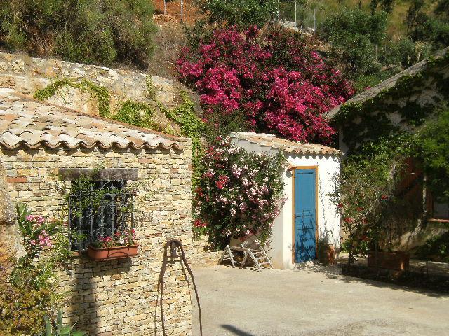 Vista esterna della casa vacanze Affitto Villa  58328 Scopello
