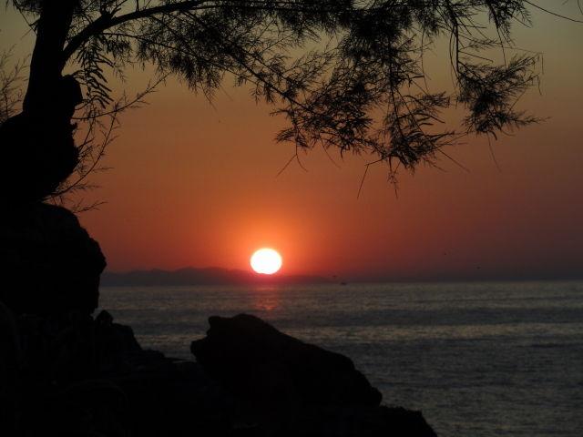 Affitto Appartamento 62556 Rio nell'Elba