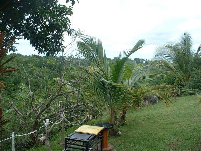 Vista dalla casa vacanze Affitto Bungalow 8003 Gosier (Guadalupa)