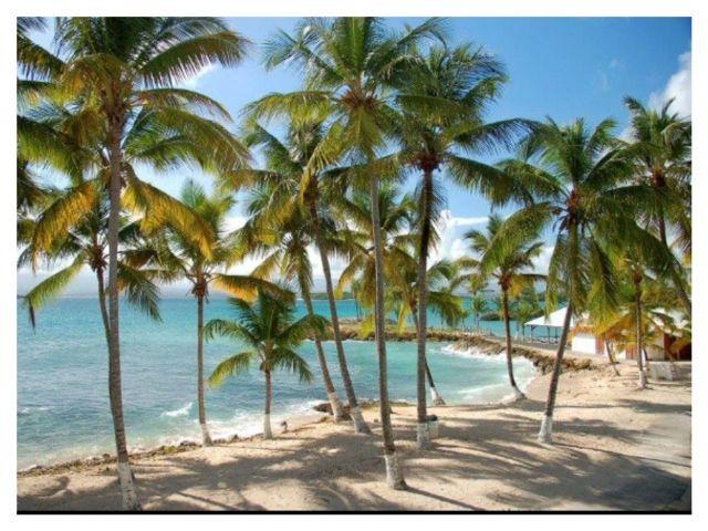 Spiaggia Affitto Monolocale 8004 Gosier (Guadalupa)