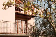 Affitto Appartamento 97907 Lucca