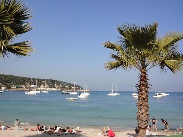 Spiaggia Affitto Appartamento 80731 Cannes