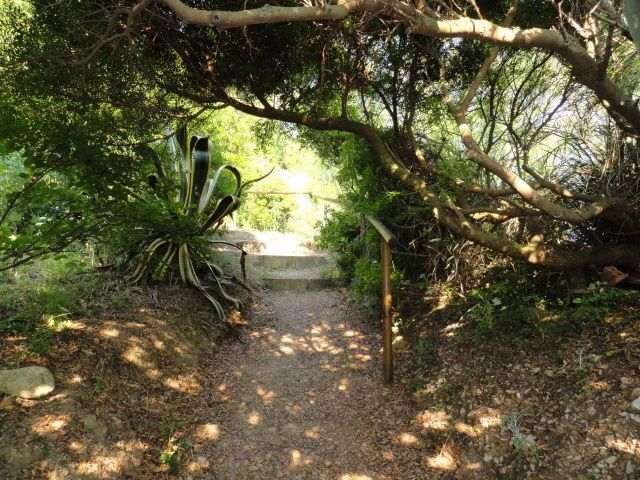 Giardino Affitto Appartamento 85148 Rio nell'Elba