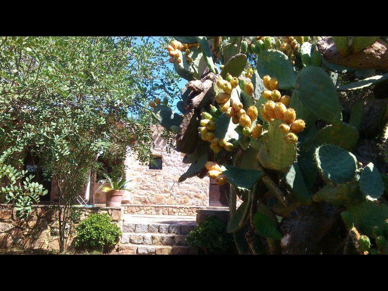 Affitto Villa  110023 Santa Maria Navarrese