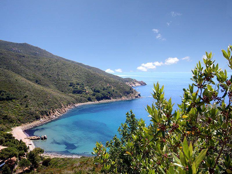 Vista esterna della casa vacanze Affitto Appartamento 111181 Campo nell'Elba