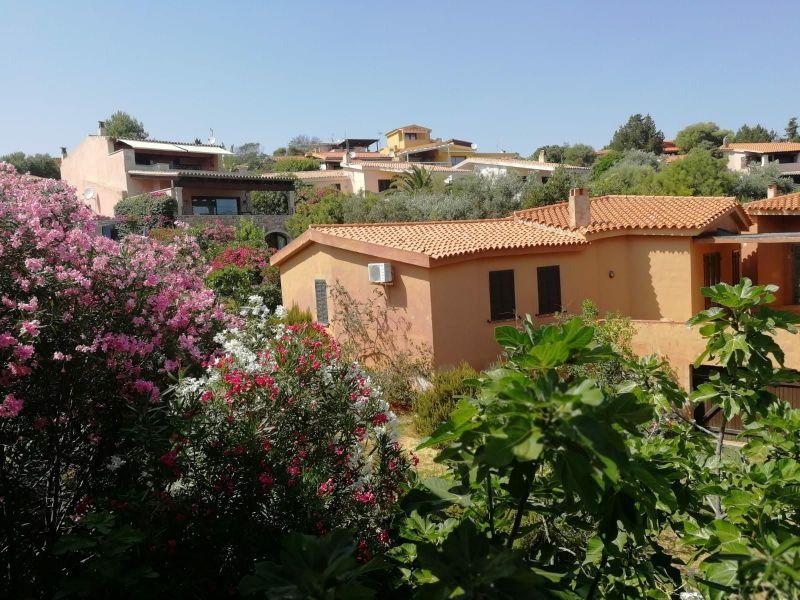 Vista dal terrazzo Affitto Villa  116375 Golfo Aranci