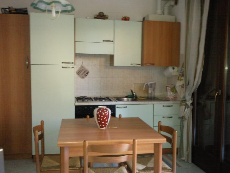 Cucina all'americana Affitto Appartamento 82442 Sirmione