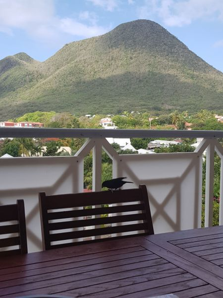 Vista dal terrazzo Affitto Appartamento 84275 Le Diamant