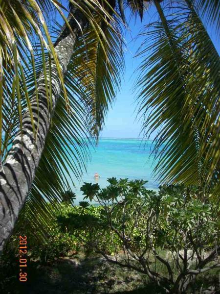 Vista dalla casa vacanze Affitto Appartamento 72713 Grand Baie