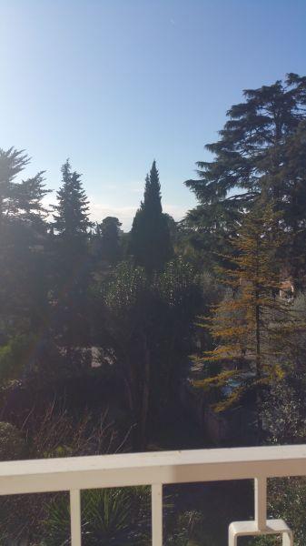 Giardino Affitto Appartamento 76852 Cannes
