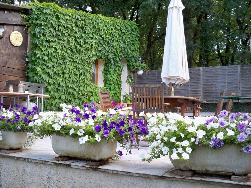 Giardino Affitto Casa 90128 Forcalquier