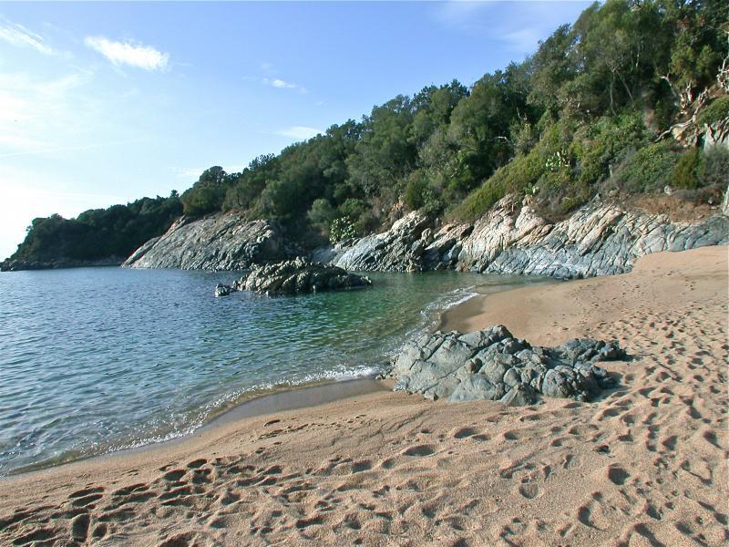 Spiaggia Affitto Casa 101199 Propriano