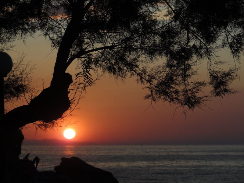 Altra vista Affitto Appartamento 102481 Rio nell'Elba