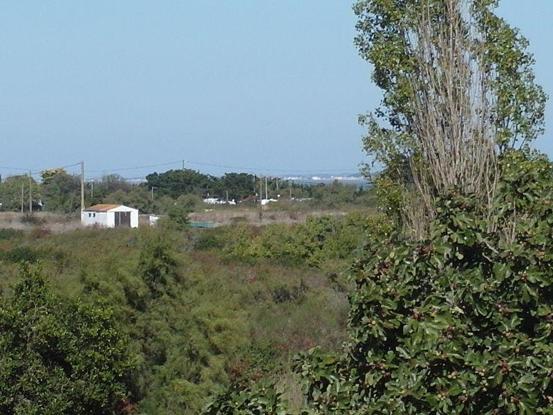 Vista dalla casa vacanze Affitto Casa 107551 Le Château d'Oléron
