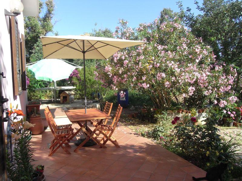 Giardino Affitto Casa 107730 Stintino