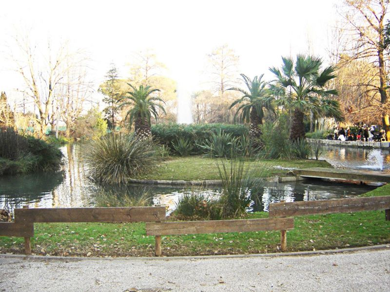 Vista nelle vicinanze Affitto Monolocale 109105 Hyères