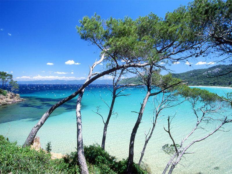 Spiaggia Affitto Monolocale 109105 Hyères