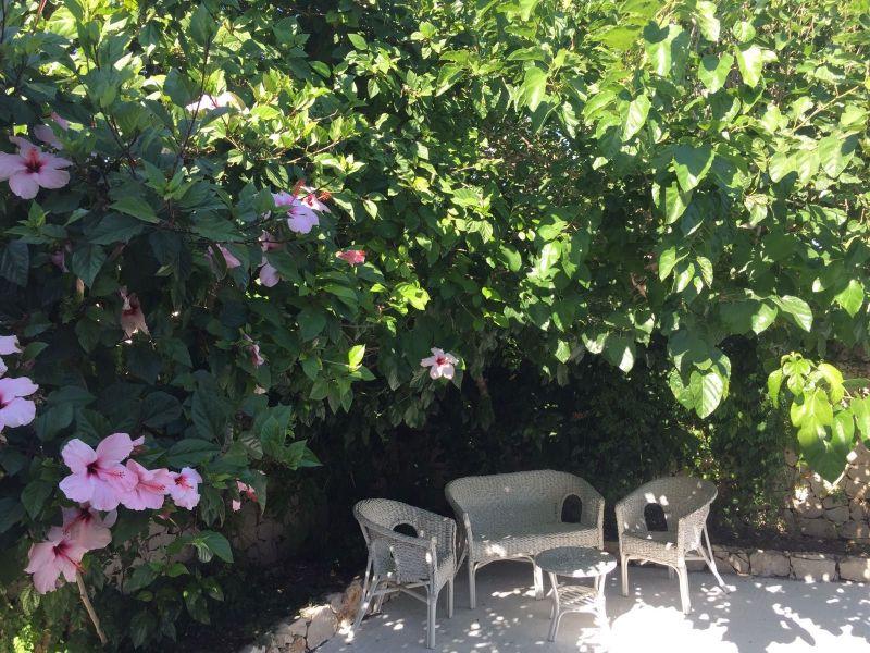 Giardino Affitto Appartamento 116014 Pachino
