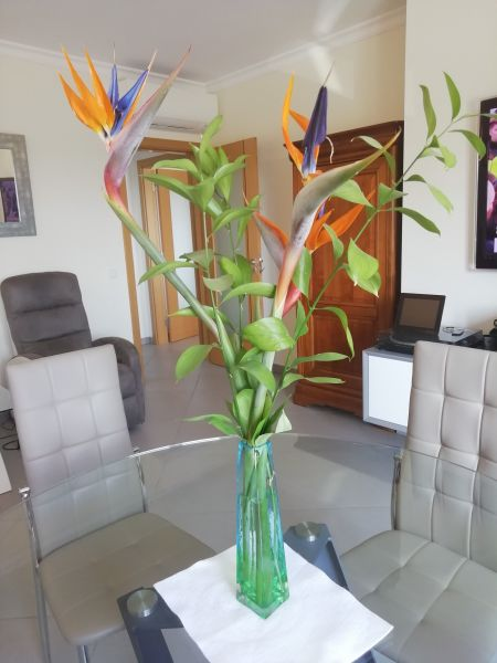 Soggiorno Affitto Appartamento 119589 Cabanas de Tavira