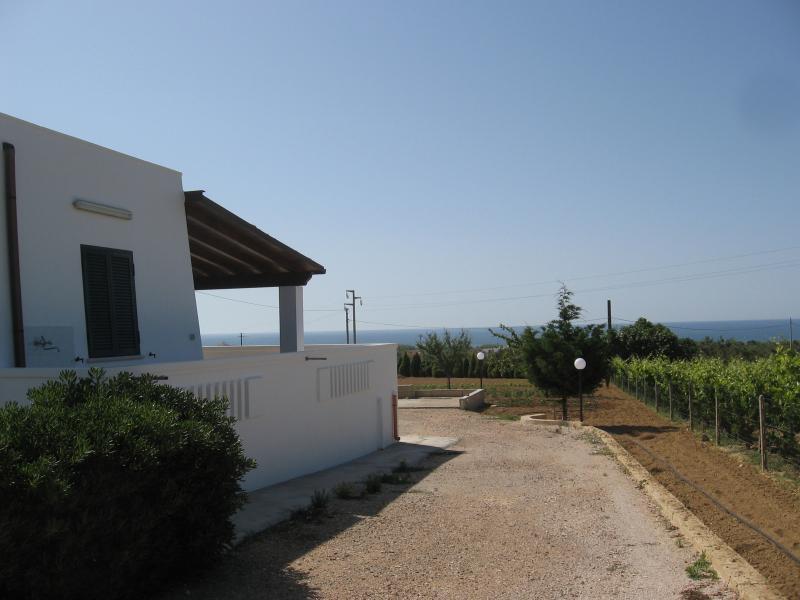 Vista dalla casa vacanze Affitto Villa  71621 Pescoluse