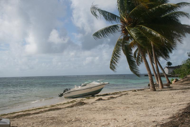 Spiaggia Affitto Appartamento 73786 Sainte Anne (Guadalupa)