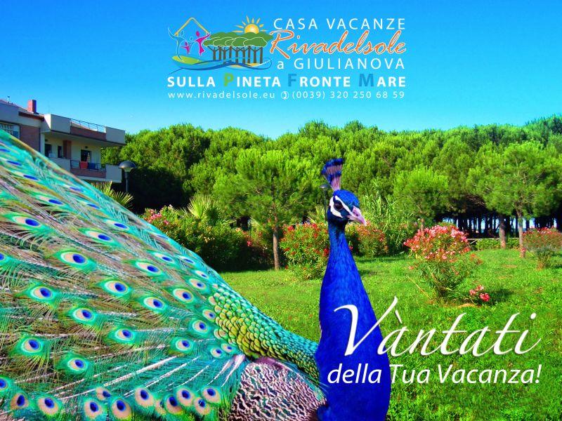 Vista esterna della casa vacanze Affitto Monolocale 84257 Giulianova