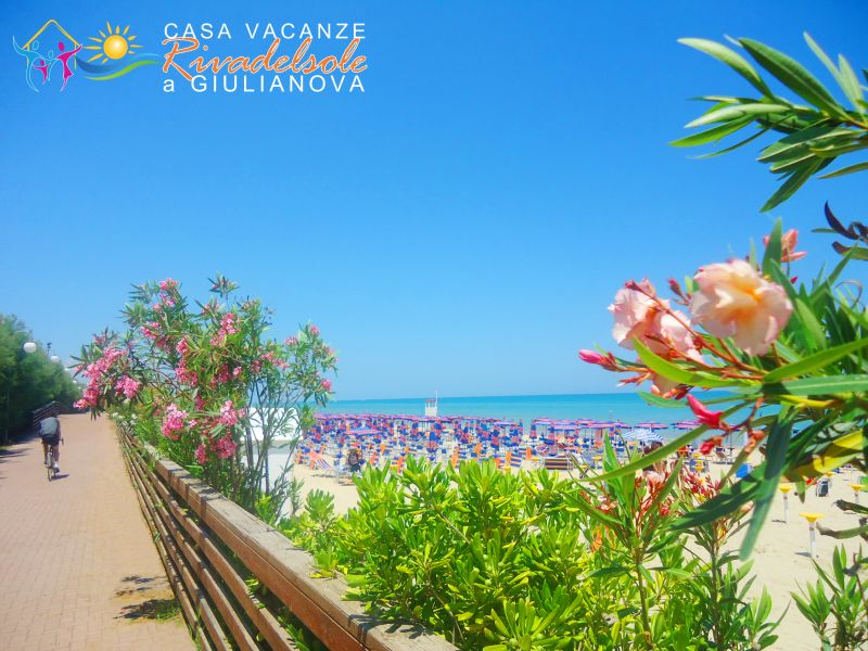 Spiaggia Affitto Monolocale 84257 Giulianova