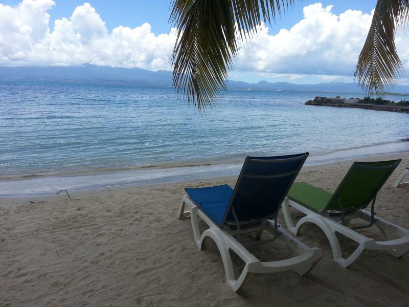Spiaggia Affitto Appartamento 86727 Gosier (Guadalupa)