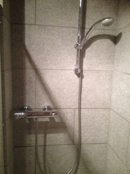 Bagno Affitto Appartamento 100869 Monginevro