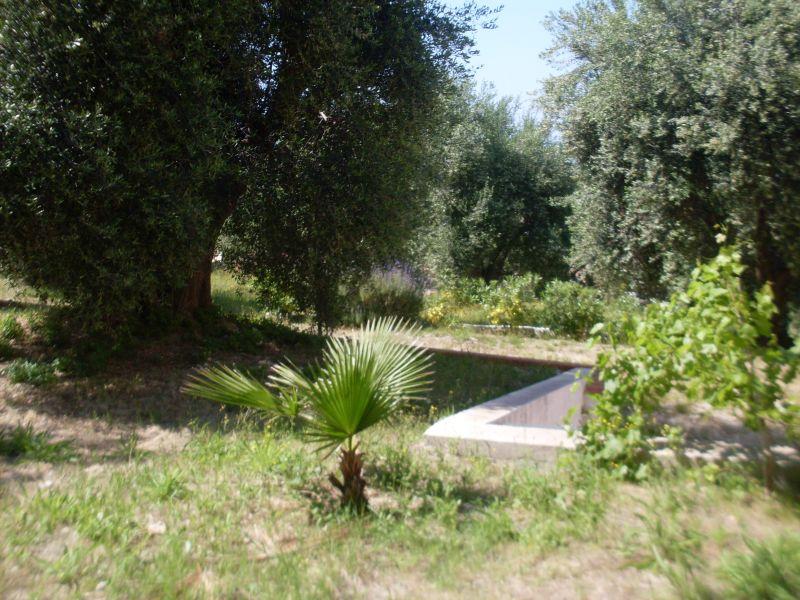 Giardino Affitto Appartamento 101780 San Menaio