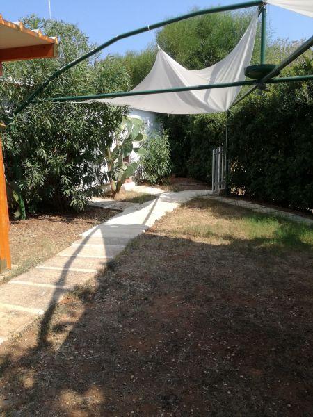 Giardino Affitto Appartamento 102048 Ostuni