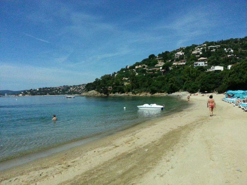 Spiaggia Affitto Appartamento 107760 Le Lavandou