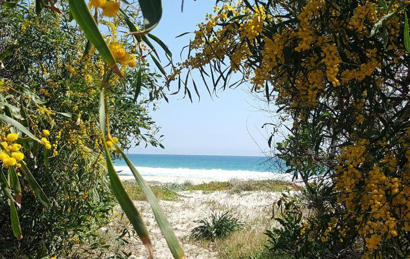 Spiaggia Affitto Villa  110122 Pula