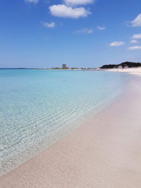 Spiaggia Affitto Appartamento 112943 Porto Cesareo
