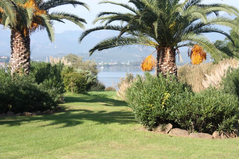 Giardino Affitto Villa  84149 Porto Vecchio