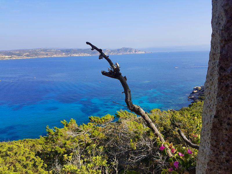 Vista dal terrazzo Affitto Villa  90063 Santa Teresa di Gallura