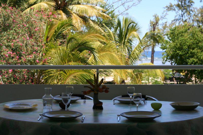 Vista dal terrazzo Affitto Appartamento 109014 Saint Gilles