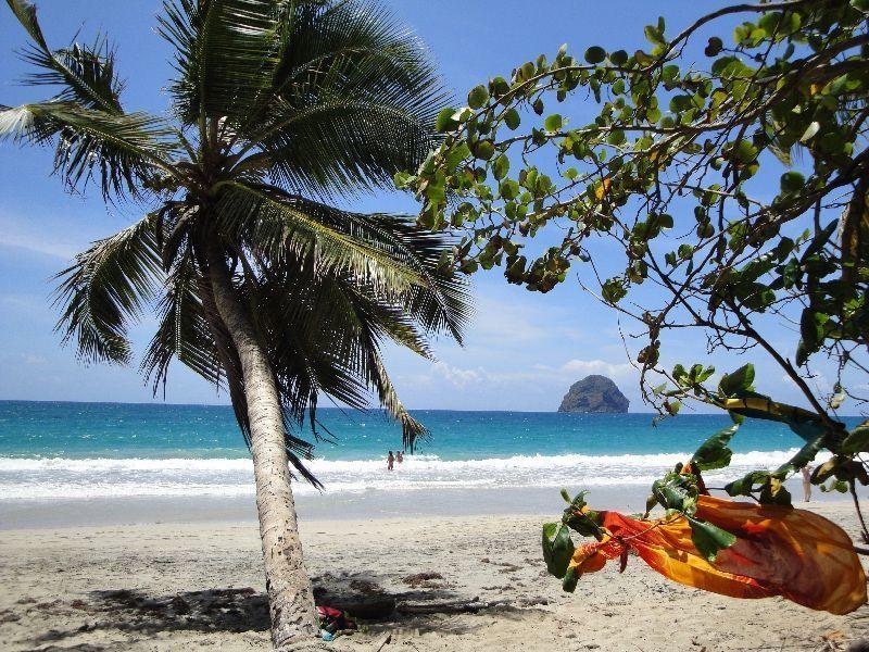 Spiaggia Affitto Monolocale 116462 Le Diamant